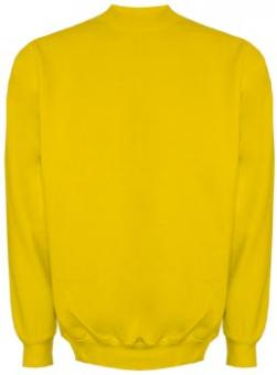 Uni-Sweater gold | L
